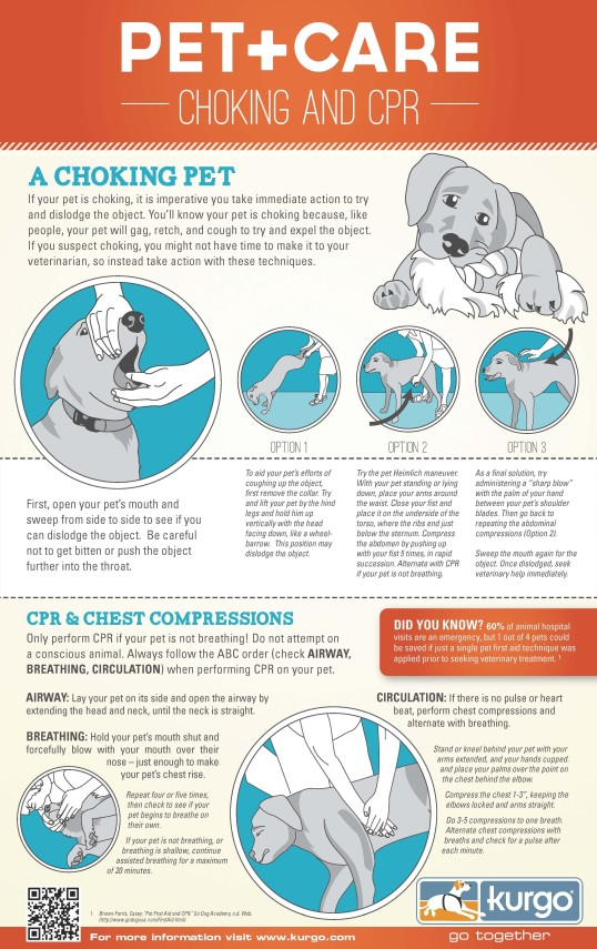 Pet CPR and Heimlich