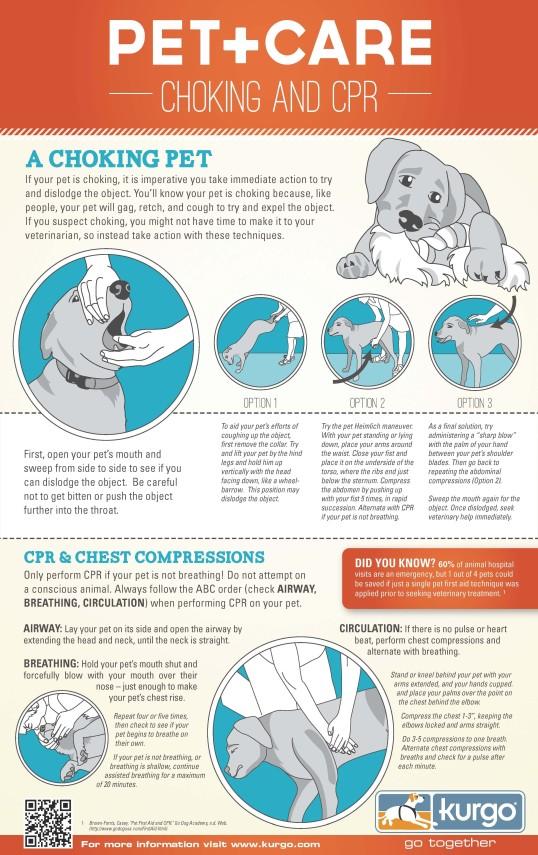 Pet CPR and Heimlich